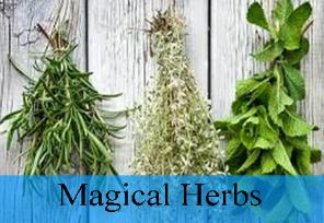 Magical herbs